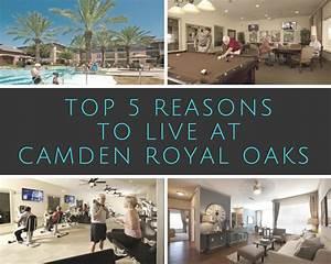 The Top 5 Reasons To Live At Camden Royal Oaks