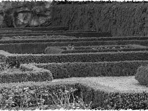 Bambus Zurückschneiden Frühjahr : mehr lesen ~ Whattoseeinmadrid.com Haus und Dekorationen