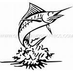 Marlin Fish Clipart Fishing Transparent Printing Ready