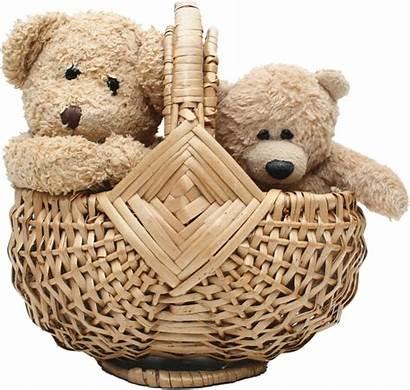 Teddy Bear Basket Transparent Animals Gift Purepng