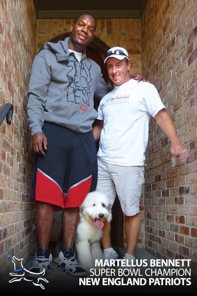 dog training dallas top rated dog trainers  dogs