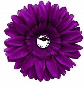 Daisy Purple PNG Image with Transparent Background | PNG Arts