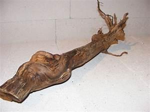 Deko Ast Holz : wurzel ast 51 16 cm dekoholz dekoration rebholz rebenholz echt holz d15 gerdas gr nwaren ~ Frokenaadalensverden.com Haus und Dekorationen