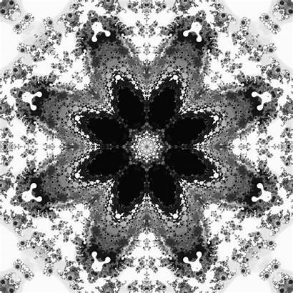Snowflake Animated Giphy Gifs
