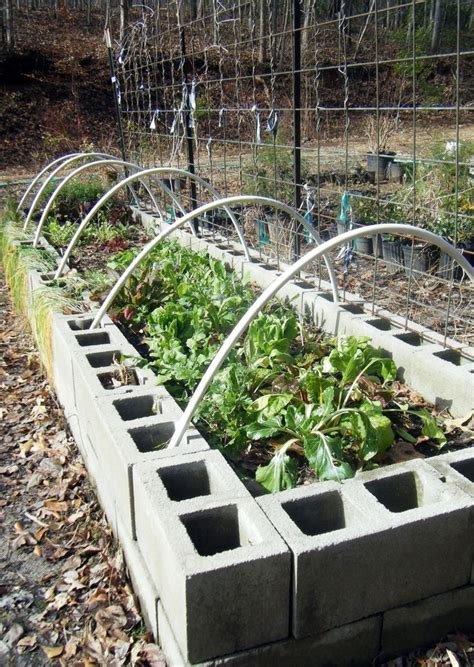 33 best images about concrete block raised bed gardening