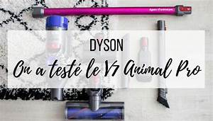 1 Tapis  2 Chats Vs L U0026 39 Aspirateur Dyson V7 Animal Pro