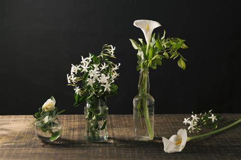 foto vasi di fiori vasi di vetro con fiori bianchi scaricare foto gratis