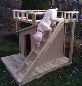 dog house no place like home pinterest rooftop deck With dog house with deck