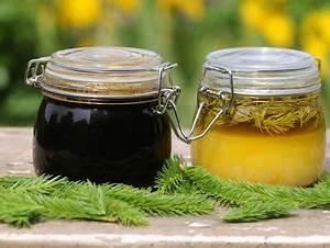 Honig Aus Fichtenspitzen : s es aus fichtenspitzen rezept eat smarter ~ Lizthompson.info Haus und Dekorationen