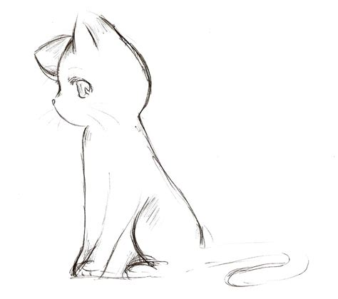 Cat Drawing Side View Animecatsketchbynyra992  How To