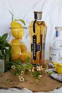 cocktail elderflower gin cocktail recipe tobi