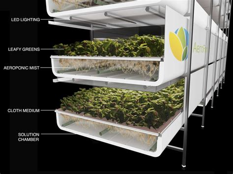 indoor mini greenhouse aerofarms newark vertical farming opening business insider