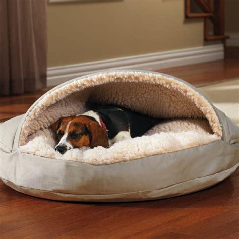 lit pour chien ultra moderne en  idees inspirantes