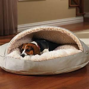 Niche D Intérieur Pour Chien : lit pour chien ultra moderne en 20 id es inspirantes ~ Dallasstarsshop.com Idées de Décoration