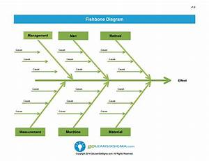 Wiring Diagram  33 Fishbone Lab Diagram Template
