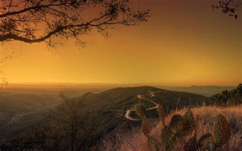 photography, Sunset, Landscape, Nature, Trees, Plants ...