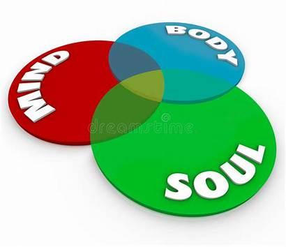 Wellness Mind Soul Total Venn Health Diagram