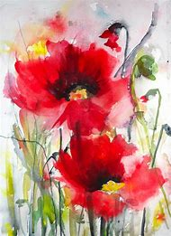 Poppy Flower Watercolor Paintings