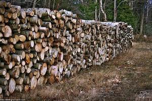 Une Corde De Bois : corde de bois ~ Melissatoandfro.com Idées de Décoration