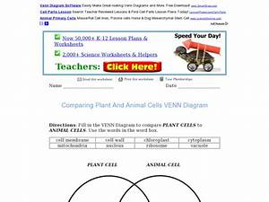 Comparing Plant And Animal Cells In A Venn Diagram Graphic