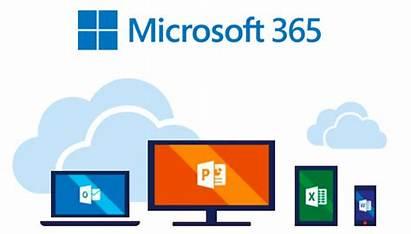 Microsoft 365 Office Apps Windows Remoto Trabajo