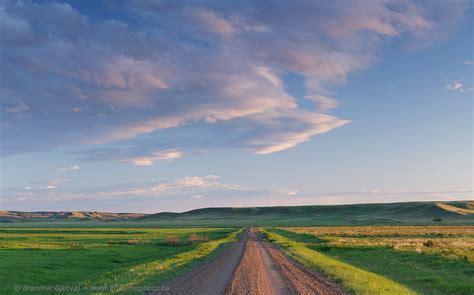grasslands road grasslands national park after the 2013 wildfire branimir gjetvaj photography