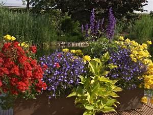 balkon bunt gepflanzen tipps und ideen With französischer balkon mit zierkies blau garten