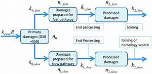 Process Flow Chart For The Two