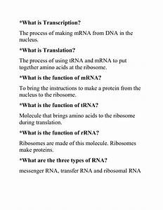 What Is The Function Of Mrna