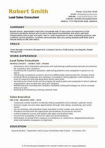 Lead Sales Consultant Resume Samples