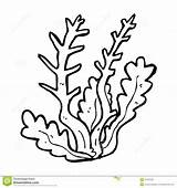 Reef Coral Coloring Pages Barrier Algae Drawing Printable Getdrawings Ecosystem Fish Drawings Getcolorings Clipartmag Paintingvalley Colorings sketch template