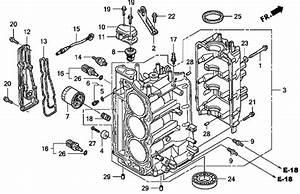 Honda Bf50 Parts Diagram  Honda  Auto Wiring Diagram