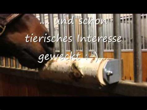 Leckstein Pferd Selber Machen