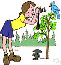 ornithologist definition of ornithologist by the free