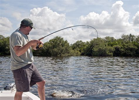 fishing gulf coast florida guide fall report service fish cool cooling down