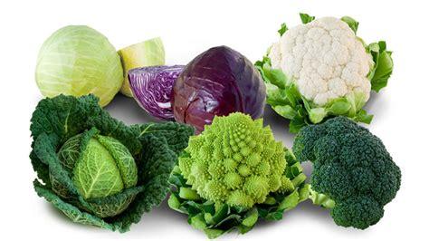 soyez chou remèdes plantes santé