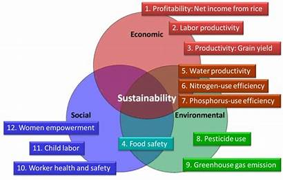 Principles Sustainable Rice Production Sustainability Platform Defined