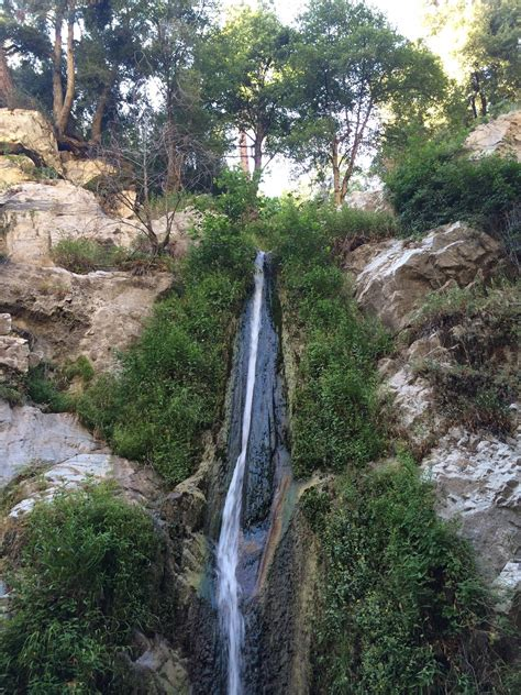 lewis falls trail california alltrails