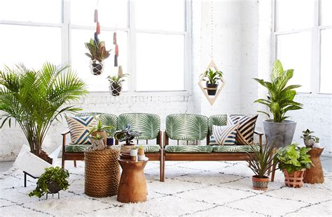 How To Use Plants In The Interior