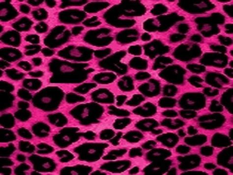 Pink And Black Animal Print Wallpaper - pink cheetah print wallpaper desktop wallpaper hd