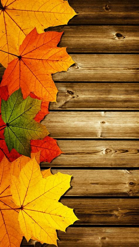 Fall Backgrounds For Iphone 11 by Best 25 Free Fall Wallpaper Ideas On Free