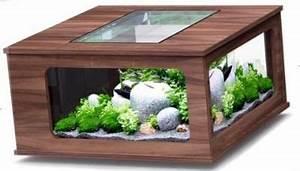 Coole Aquarium Deko : mit aquarium fies f r die fische aber mit einem kakteengarten coole idee einrichtungen m bel ~ Markanthonyermac.com Haus und Dekorationen