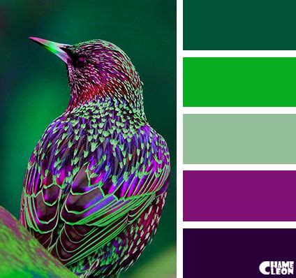 best 20 green colors ideas on