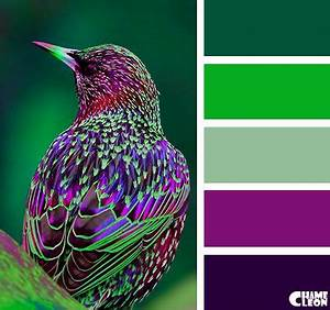 Best 20 Green colors ideas on Pinterest