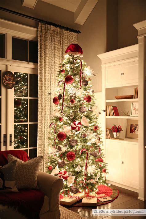christmas tree  sunny side  blog