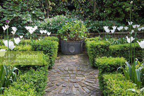 gap gardens small buxus sempervirens parterre in