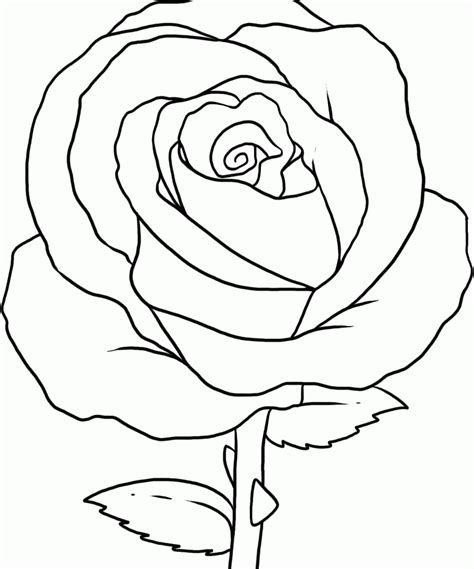 Help the children choose rose colors like pink, red, mauve, and white. Coloring Pages Rose - Coloring Home