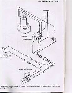 Evinrude Tilt Trim Wiring Diagrams