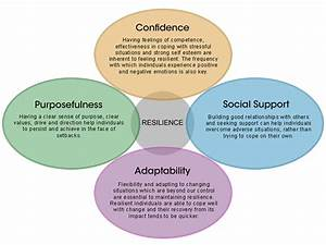 Developing Resilience  A Manager U2019s Guide