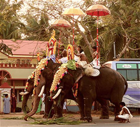 elephant tub india southern india the elephant s blessing brihadeeswarar